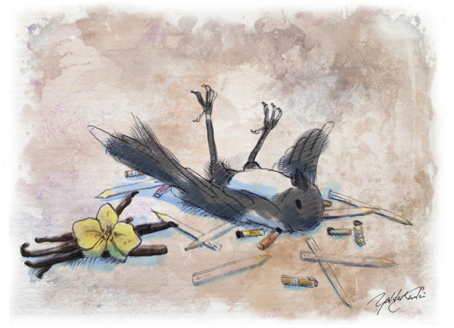 Magpie had a enough of vanilla... | Illustration by The Perfume Magpie