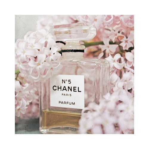 Bottle of Chanel No. 5 perfume with pink hyacinths
