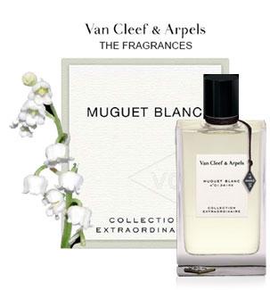 VCA Muguet Blanc
