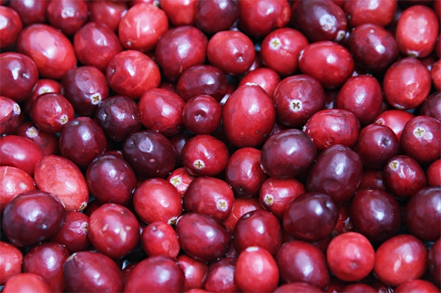 Fragrance Friday: Cranberry Chutney