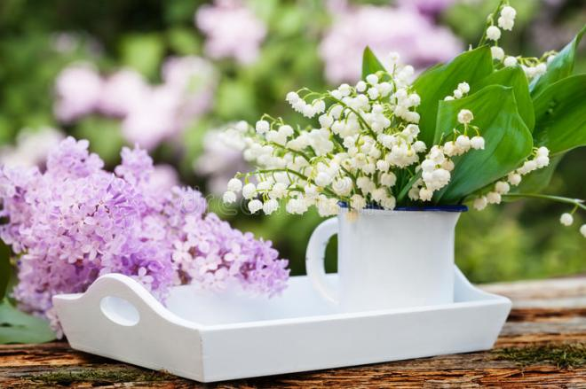Lily of the valley flowers with lilac on white tray