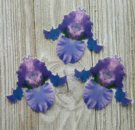 Edible iris flower cake toppers from Sugar Butterflies on Etsy.
