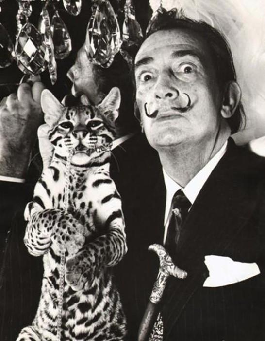 Artist Salvador Dali with pet ocelot Babou