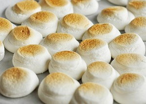 Tray of toasted marshmallows
