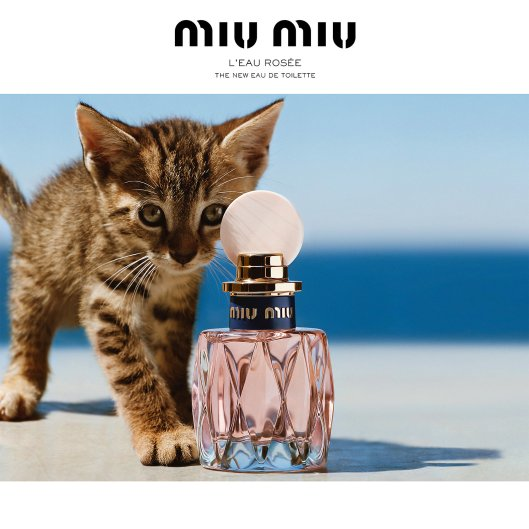 Thunking Thursday: Miu Miu L'Eau Rosee