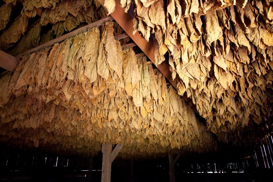 Tobacco barn Windsor CT